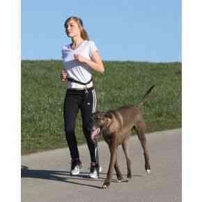Joggingleine Active mit Hüftgurt, für Hunde bis 40 kg
